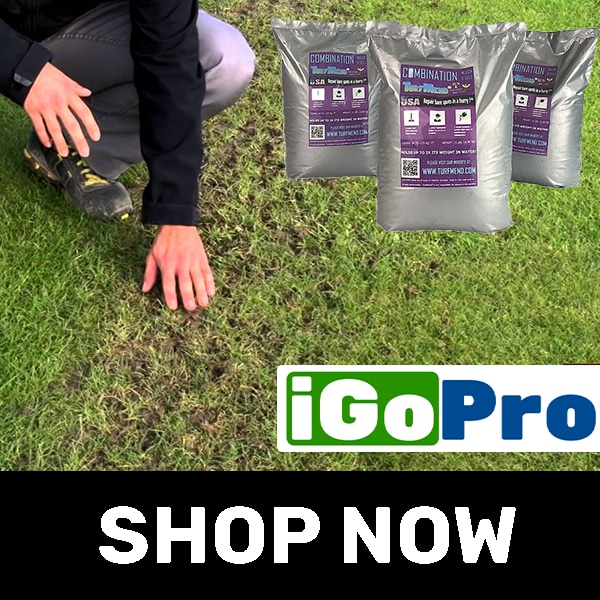 Buy Grass Bare Spot Repair