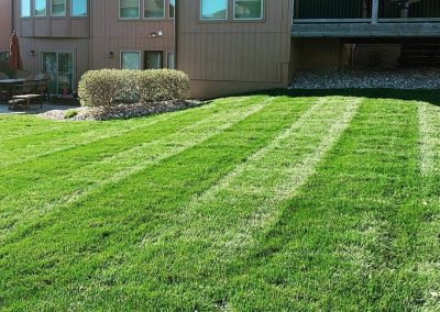 Pro Mow Lawn Care - Kansas City MO 4