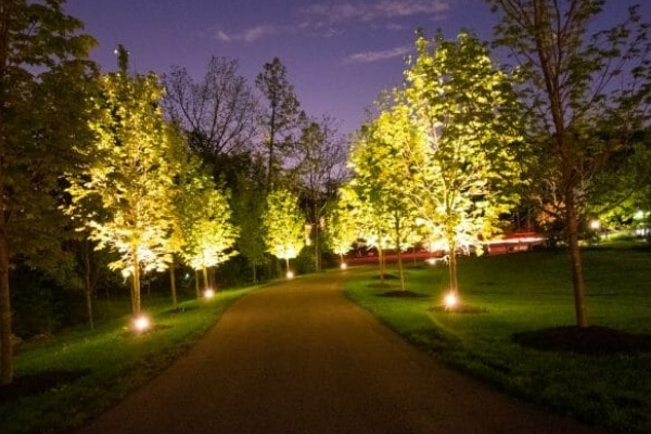 A driveway lined with landscape lighting