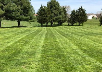 Susquehanna Lawn Care - Port Deposit, MD 3