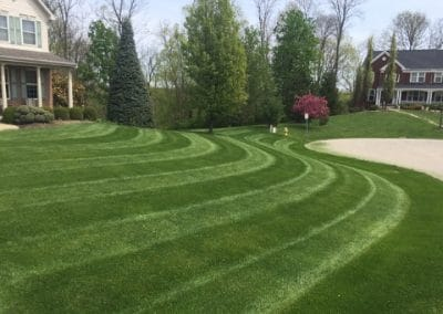 Lawn Aeration Lakeville MN