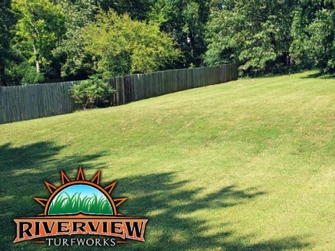 Lawn Care Services in Fort Smith