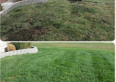 Lawn Care Services in Saint Louis