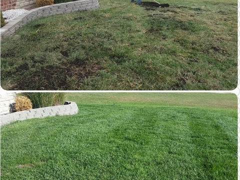 Green Elements 187 Professional Lawn Care In St Louis Mo
