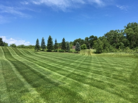 Paradise Property Services - Lakeville MN 3