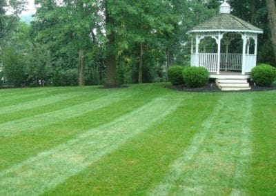 Lawn Treatments St Louis