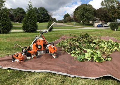 Susquehanna Lawn Care - Port Deposit, MD 4