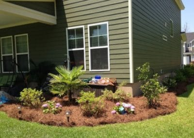 Pruning Service Fayetteville GA