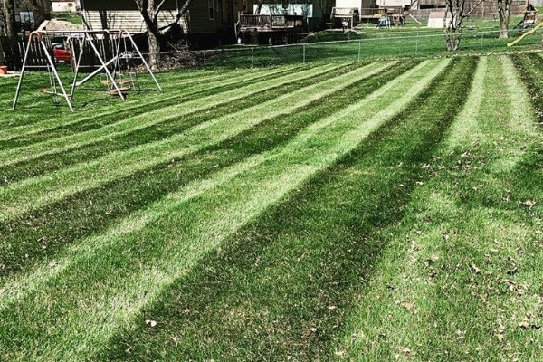 A freshly mowed lawn with visible mowing stripes