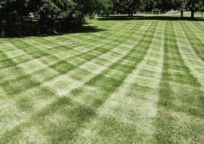 Pro Mow Lawn Care - Kansas City MO 2