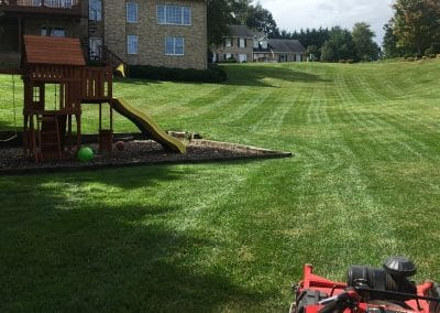 Hall's Pro Lawn Mowing Service - Kingsport, TN 11