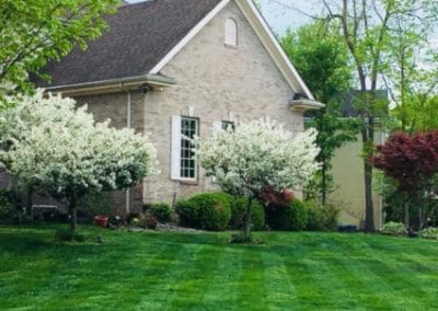 West Chester OH Lawn Care Services