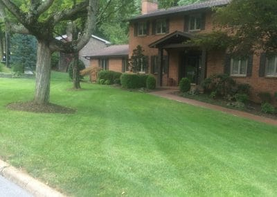 Hall's Pro Lawn Mowing Service - Kingsport, TN 9